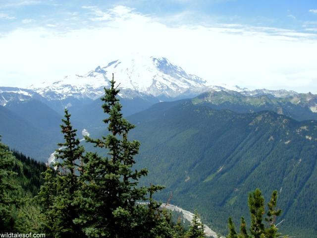 Mount Rainier | Crystal Mountain Resort