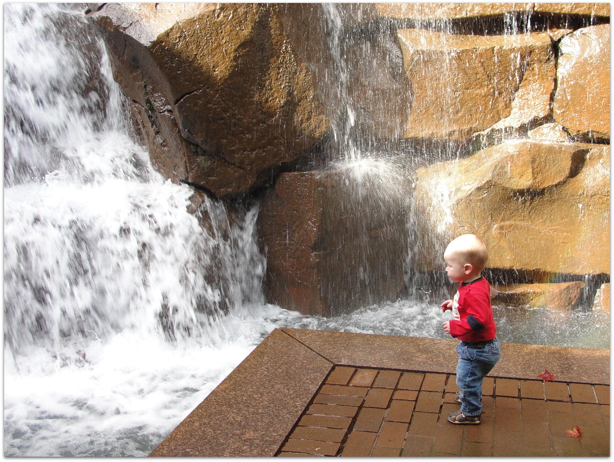 Escape To Seattle S Waterfall Garden Park Wildtalesof Com