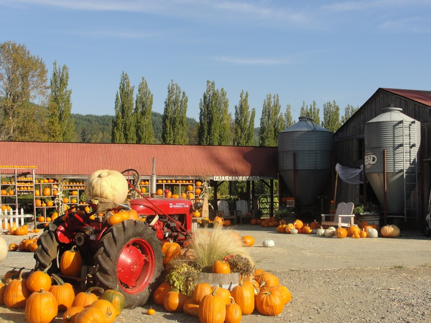 Fall City Farms