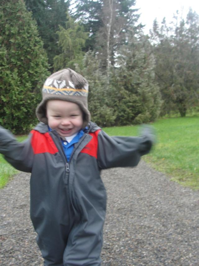 Joyful: WA Park Arboretum