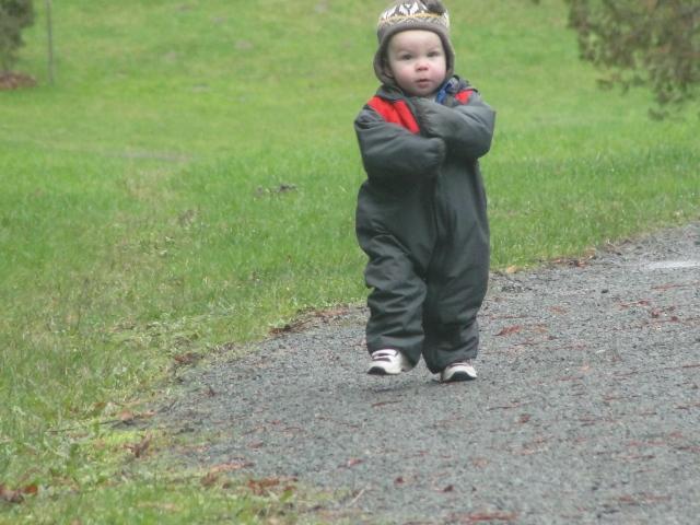 Toddling: WA Park Arboretum