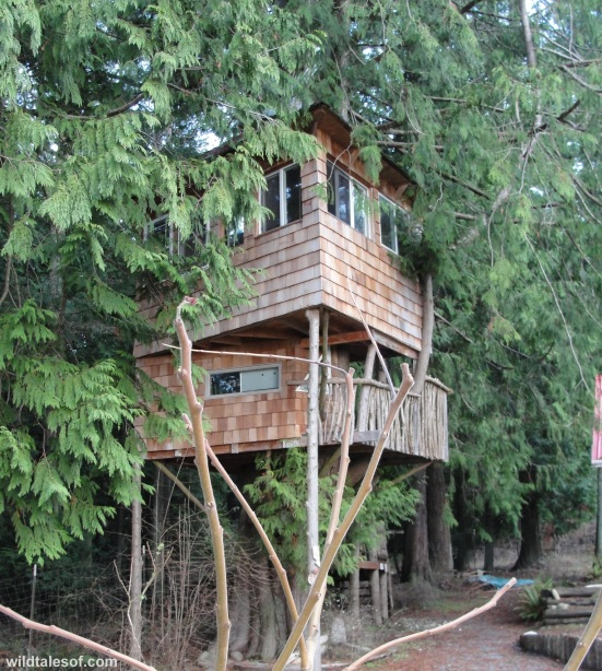 Orcas Island Pottery Tree House