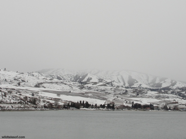 Cloudy Day Lake Chelan, WA