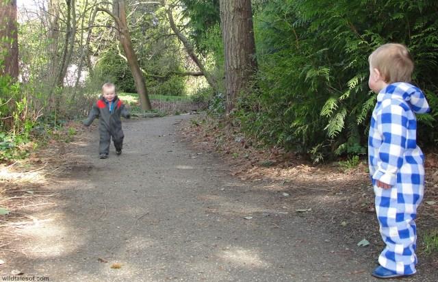 Trail Washington Park Arboretum