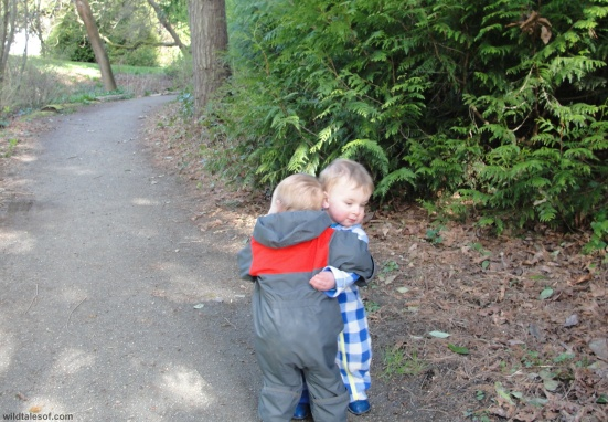 Big Hug: Washington Park Arboretum