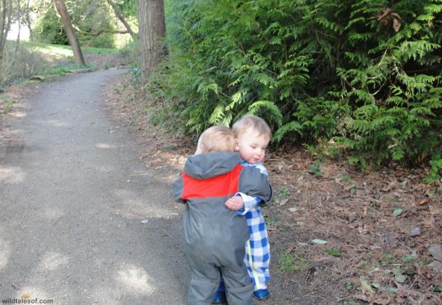 Big Hug: Washington Park Arboretum