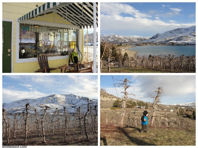 Vin du Lac Winery Lake Chelan