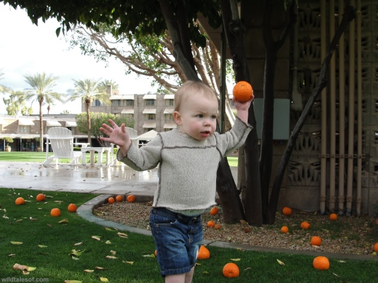 Throwing oranges Arizona Biltmore