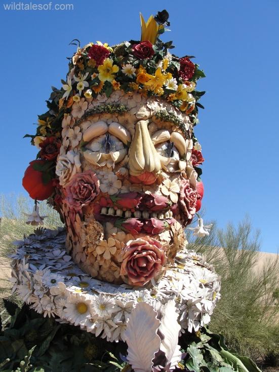 Philip Haas: Desert Botanical Garden--www.wildtalesof.com