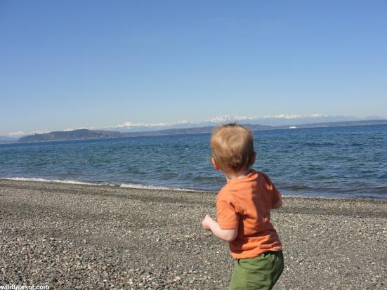 Throwing Rocks at Alki Beach