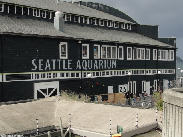 Seattle Aquarium Sign