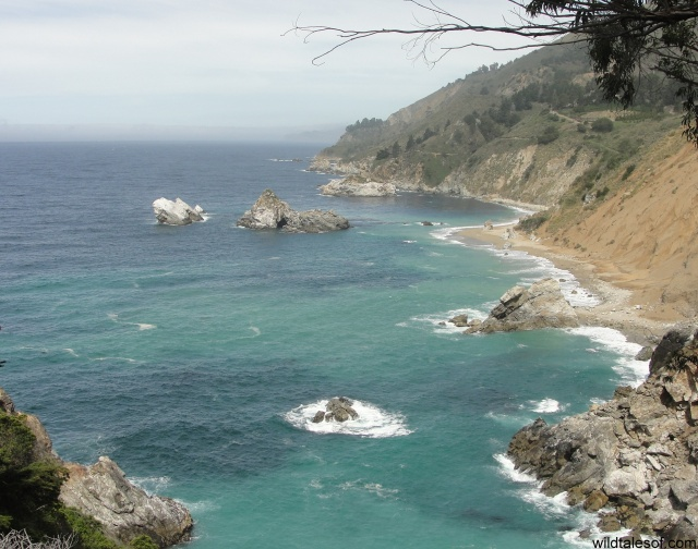 Big Sur, California | WildTalesof.com