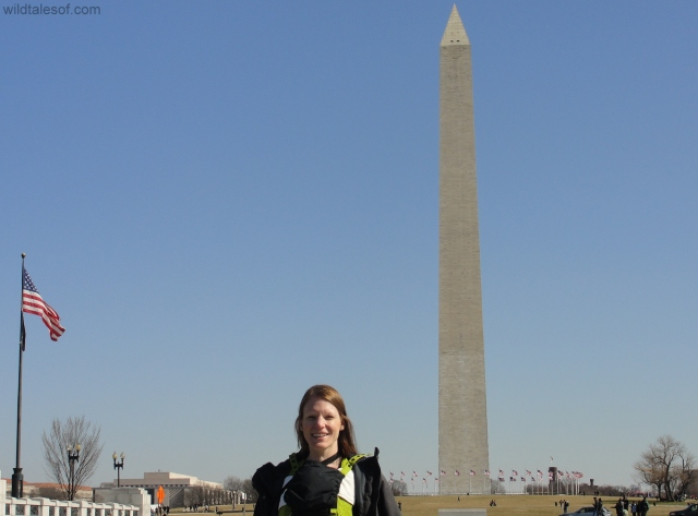 Washington Monument | WildTalesof.com