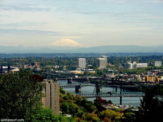 Portland, OR's 4 T Trail: Tram | WildTalesof.com