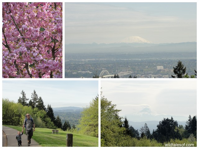 Portland, OR's 4 T Trail: Council Crest | WildTalesof.com