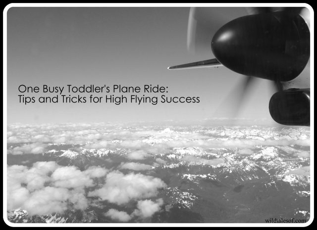 One Busy Toddler's Plane Ride | WildTalesof.com