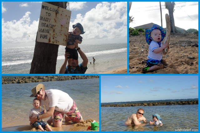 Baby Beach at Moanakai Beach Cottage: Kapa'a, Kauai | WildTalesof.com