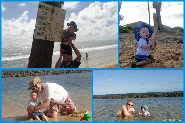 Baby Beach at Moanakai Beach Cottage: Kapa'a, Kauai | WildTalesof.com