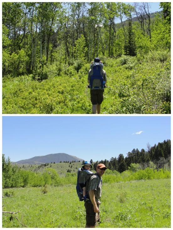 Hike around Merrell Lake: Hubbard's Yellowstone Lodge   WildTalesof.com
