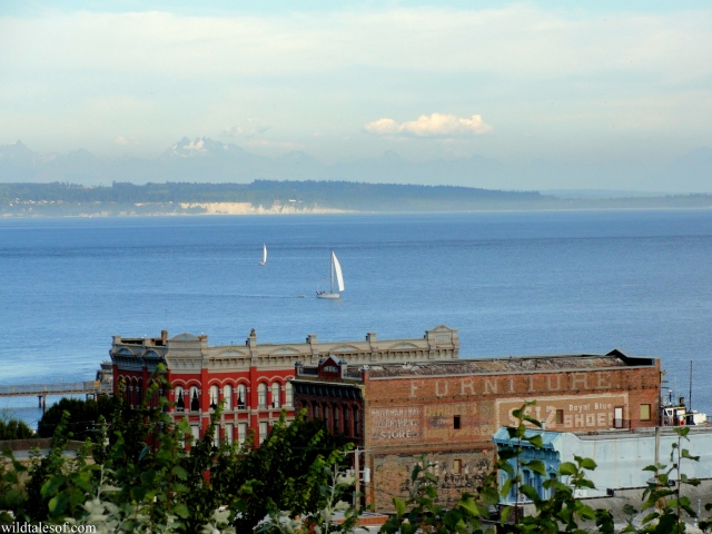 Palace Hotel: Port Townsend, WA | WildTalesof.com