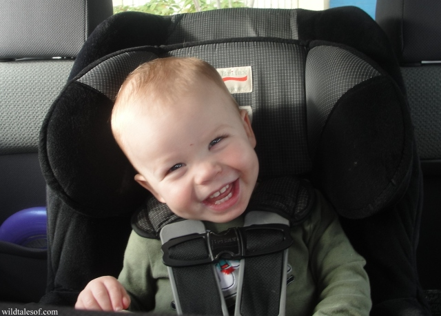 Flying with a Toddler: Tips for Checking the Car Seat | WildTalesof.com