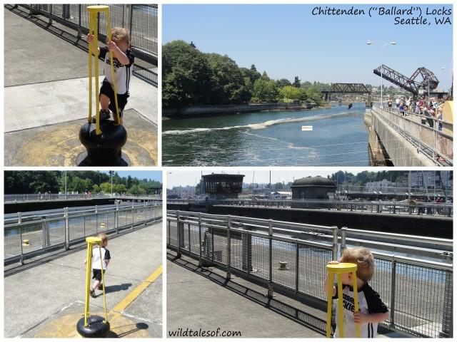 "Chittenden (""Ballard"") Locks | WildTalesof.com"