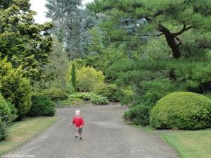 South Seattle's Kubota Garden | WildTalesof.com