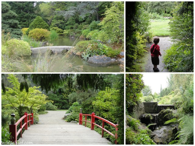 South Seattle's Kubota Garden | WildTalesof.com