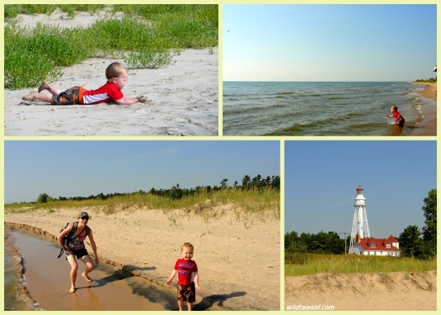 Our Midwest Beach Vacation: Exploring Point Beach State Forest in Two Rivers, WI| WildTalesof.com