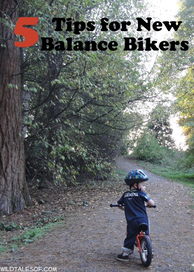 5 Quick Tips for New Balance Bikers | WildTalesof.com