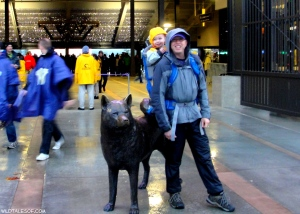 Exploring UW's Husky Stadium and Surviving a Rainy Day Football Game | WildTalesof.com
