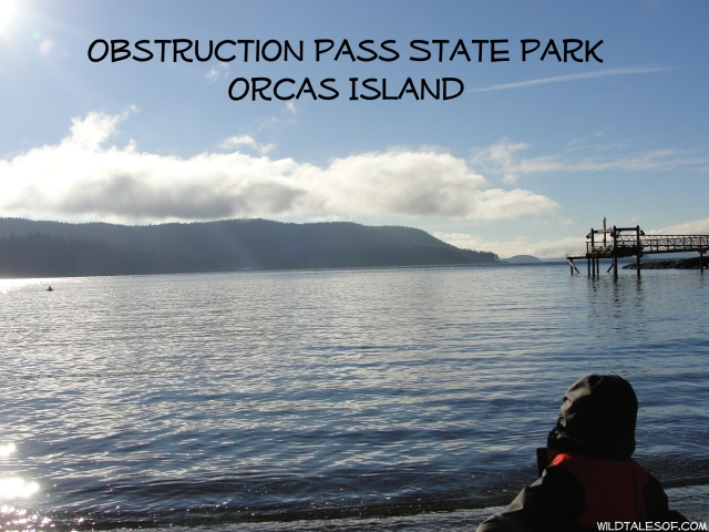 Obstruction Pass State Park: Orcas Island, WA | WildTalesof.com