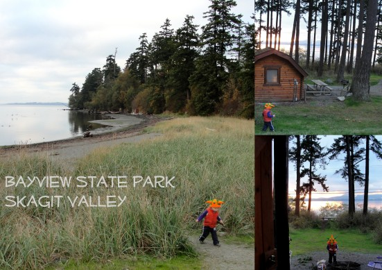 Bayview State Park: Skagit Valley, WA | WildTalesof.com