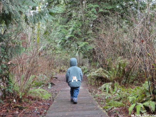 Hiking with Toddlers: 10 Tips to Keep Everyone Happy on the Trail | WildTalesof.com