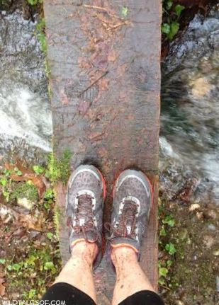 Moving Past Trail Running Excuses | WildTalesof.com
