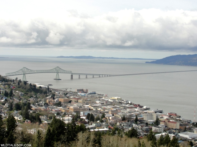 View from the Astoria Column | WildTalesof.com