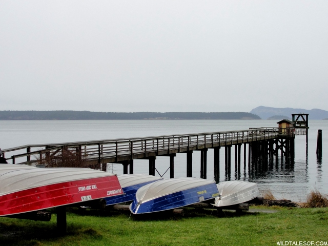 Summer Camp Dreams: Orcas Island< WA's Camp Orkila | WildTalesof.com