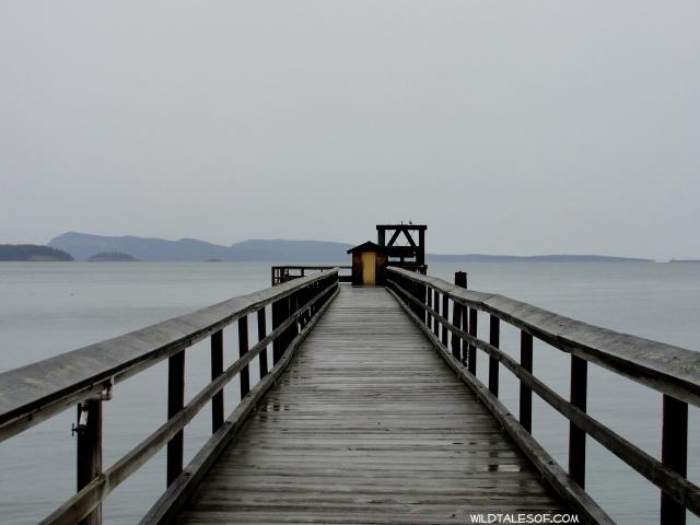 Summer Camp Dreams: Orcas Island< WA's Camp Orkila | WildTalesof.com