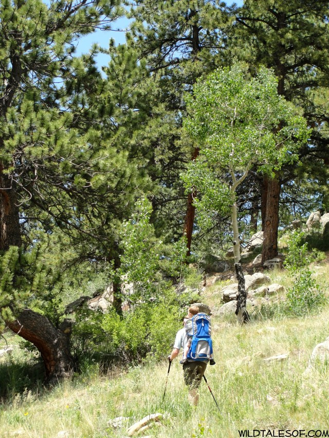Holiday Reset: Golden, CO's Golden Gate Canyon State Park| WildTalesof.com