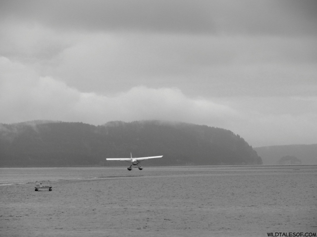 Magical Moments We can Make Happen: Seaplane Take-off on Orcas Island | WildTalesof.com