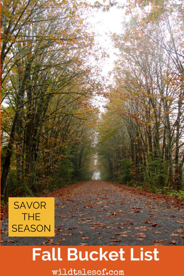 Savor the Season with a Fall Bucket List | WIldTalesof.com