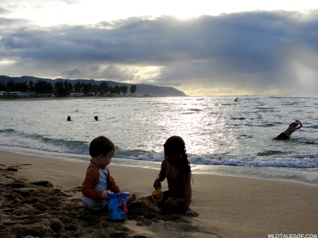 Family Accommodations on Oahu's North Shore: Haleiwa Getaway | WildTalesof.com