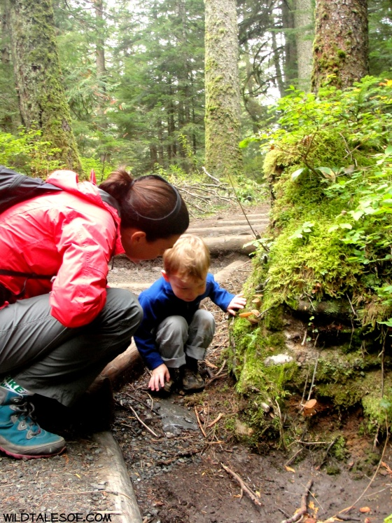 Western Washington Preschool  Hikes: Franklin Falls | WildTalesof.com