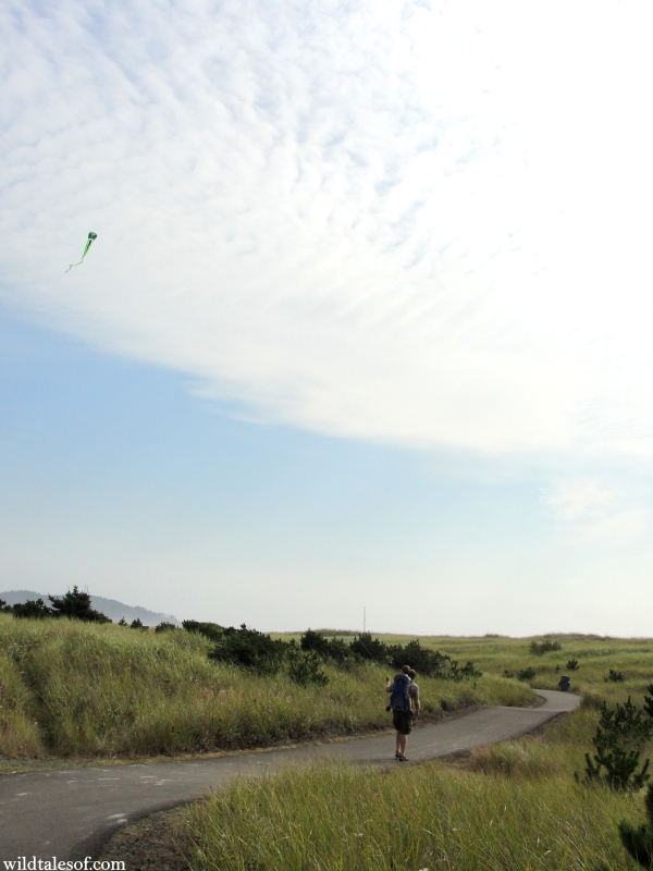 Walk and Fly Along the Lewis and Clark Discovery Trail: Long Beach, WA | WildTalesof.com