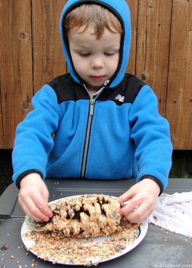 Easy Backyard Activity: Pine Cone Bird Feeders | WildTalesof.com