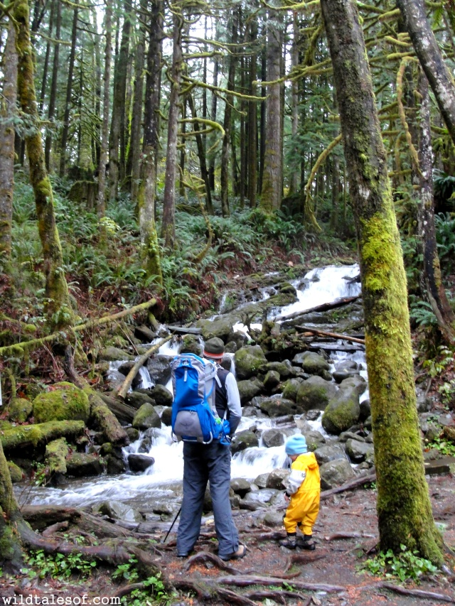 Last Family of 3 Travel Adventure: Wallace Falls State Park | WildTalesof.com