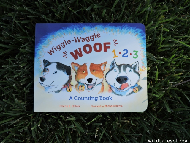 Celebrating the Iditarod with Wiggle-Waggle Woof 1, 2, 3: A Counting Book | WildTalesof.com