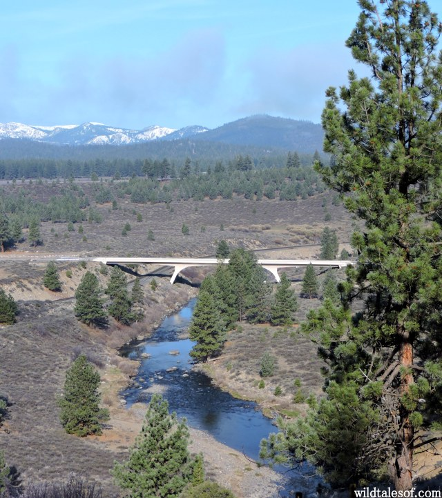 Truckee, California | WildTalesof.com