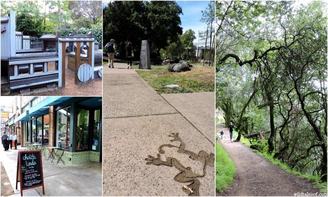Oakland, California | WildTalesof.com
