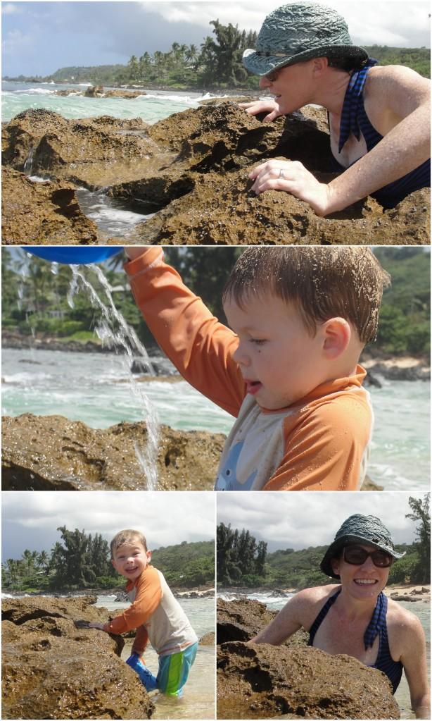 Chun's Reef: Tidepooling Fun on Oahu's North Shore | WildTalesof.com